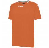Otroška dres majica hummel CORE TEAM POLY