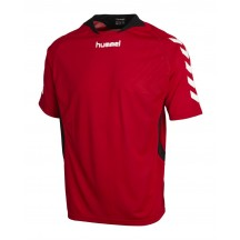 moški dres hummel Teamplayer Poly